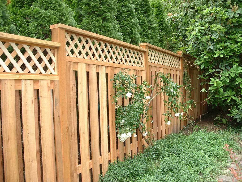 Picture of: Edge Dog Fences Outdoor