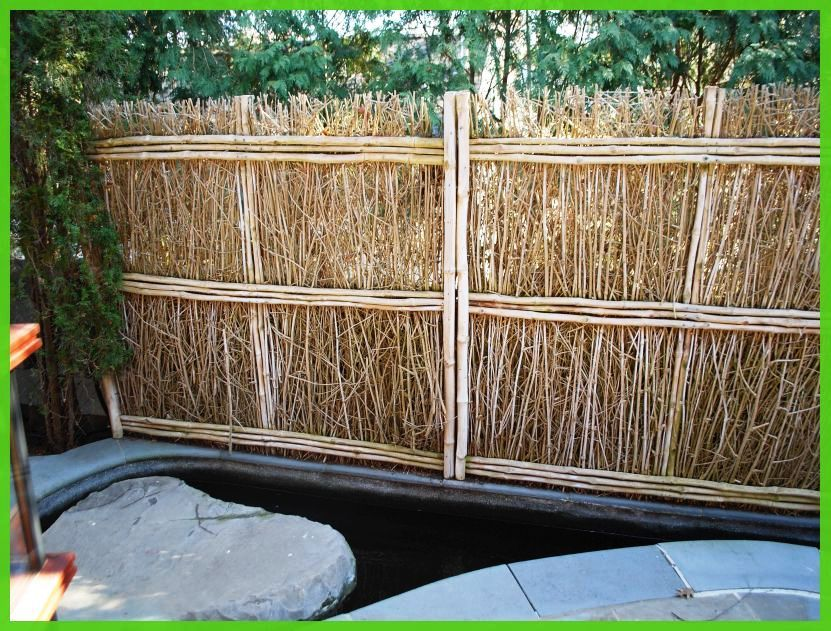 Picture of: Inexpensive Yard Fences Image