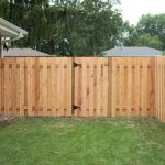 Inexpensive Yard Fences Privacy