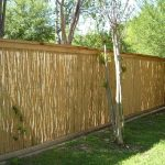 Inexpensive Yard Fences Type