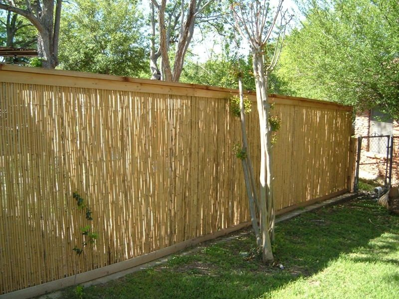 Picture of: Inexpensive Yard Fences Type