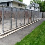 Kennels Dog Fences Outdoor