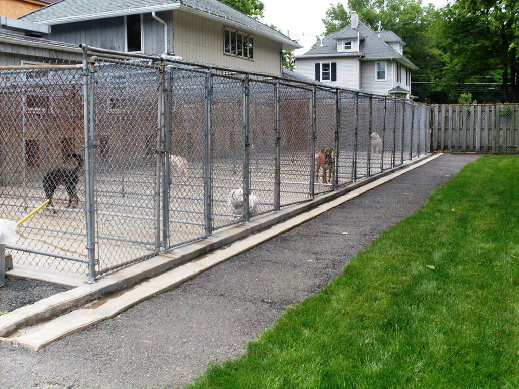 Picture of: Kennels Dog Fences Outdoor