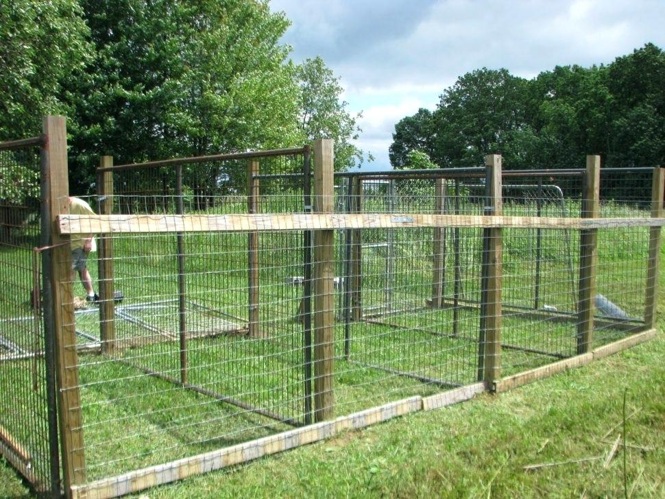 Picture of: Large Dog Fence Gate