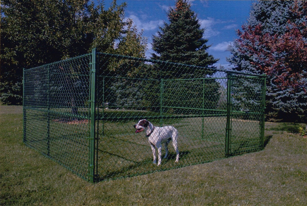 Picture of: Large Dog Fence Ideas