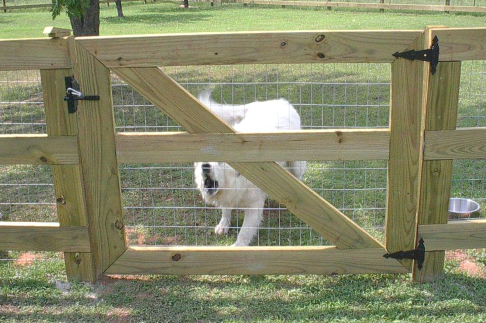 Picture of: Large Dog Fence for Camping
