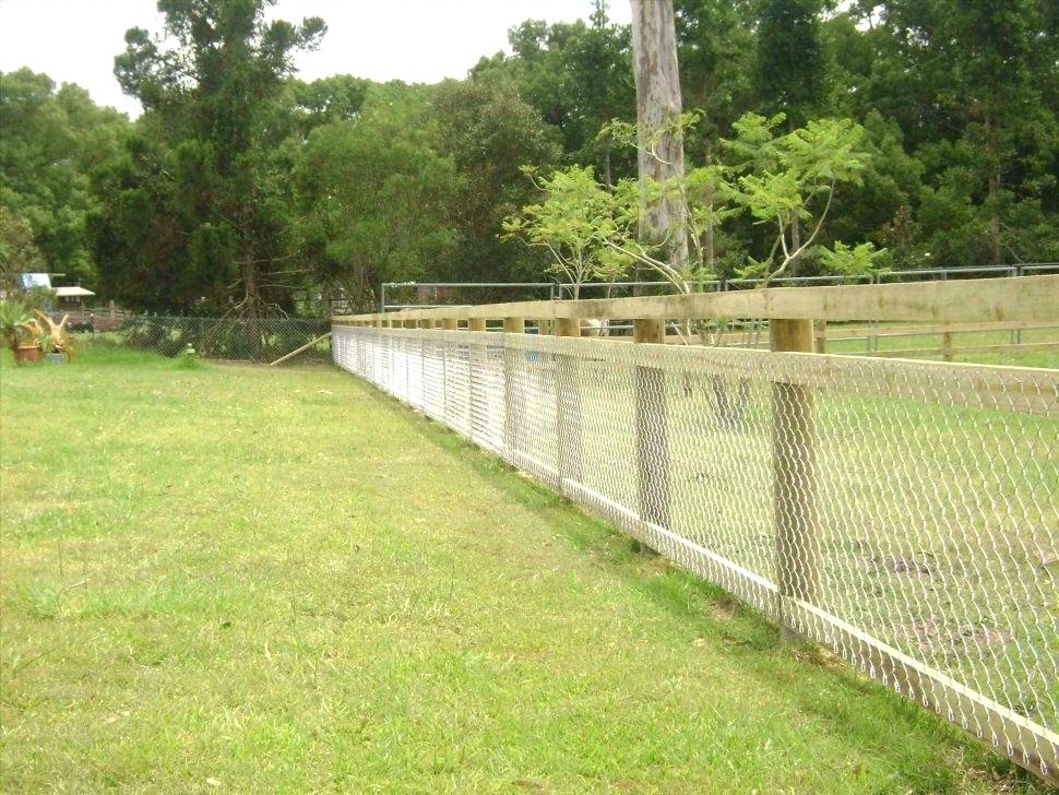 Picture of: Large Dog Fence for Sale