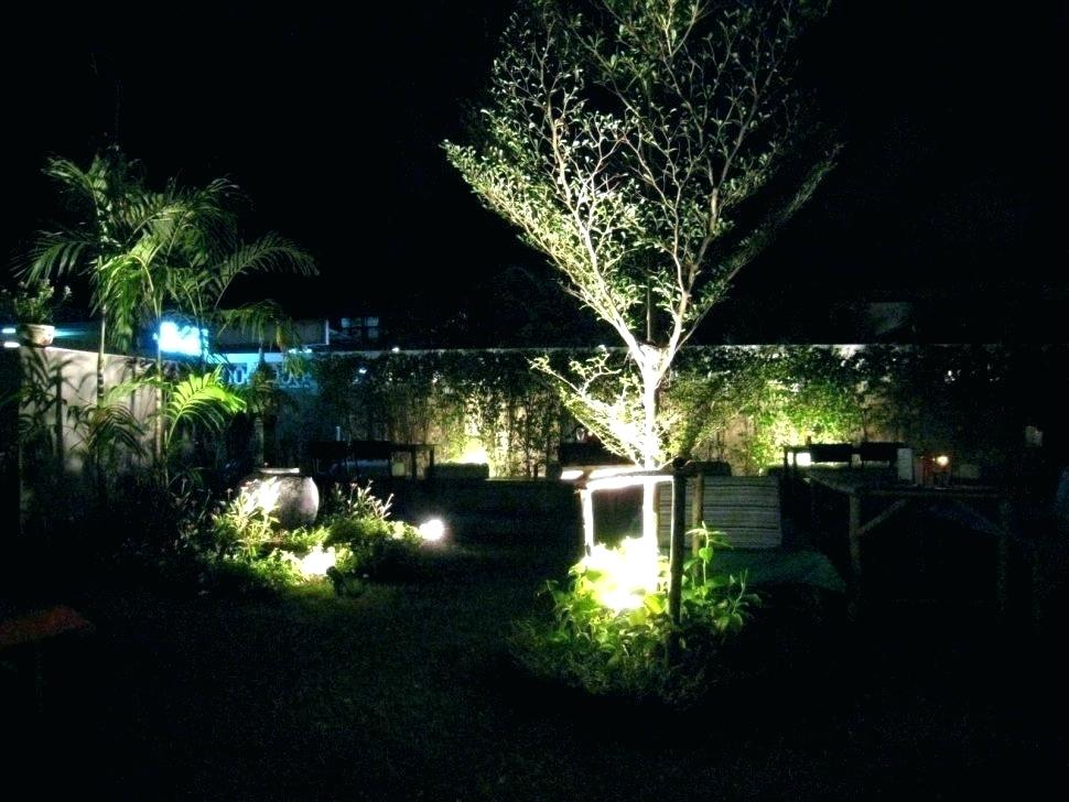 Picture of: Led Outdoor Landscape Lighting and Irrigation