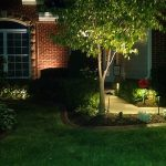 Low Voltage Led Outdoor Lighting Tree