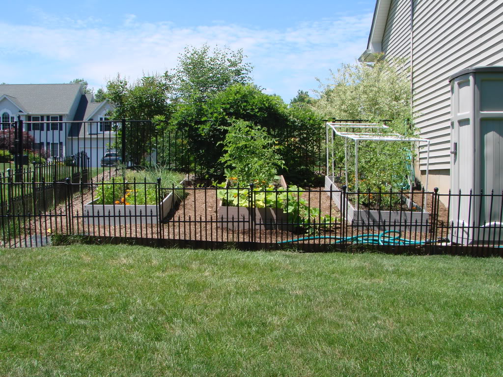 Picture of: Metal Dog Fence Ideas