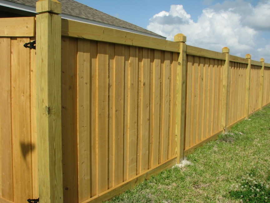 Picture of: Modern Board On Board Fence Panels