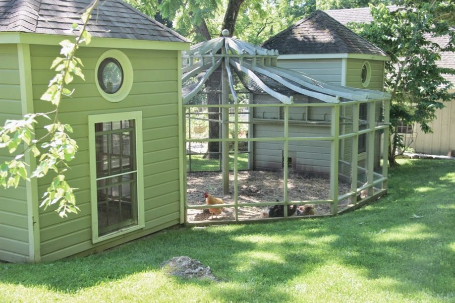 Picture of: Modern Chicken Fence Ideas