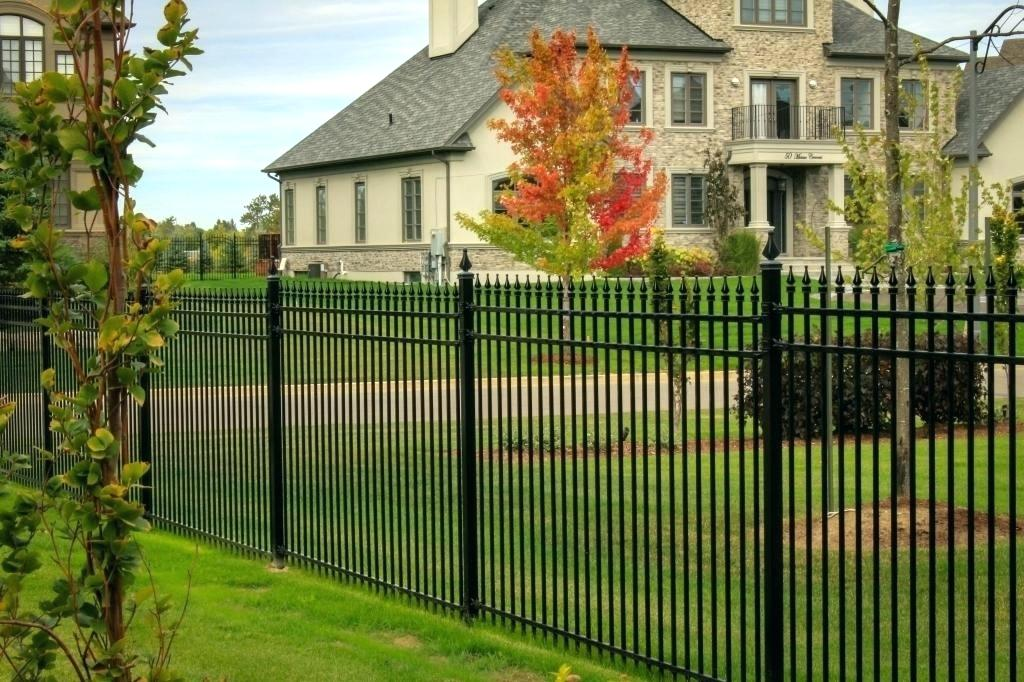 The Best No Dig Dog Fence Ideas