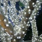Outdoor Christmas Lamp Post String