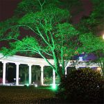 Outdoor Laser Light Projector Tree