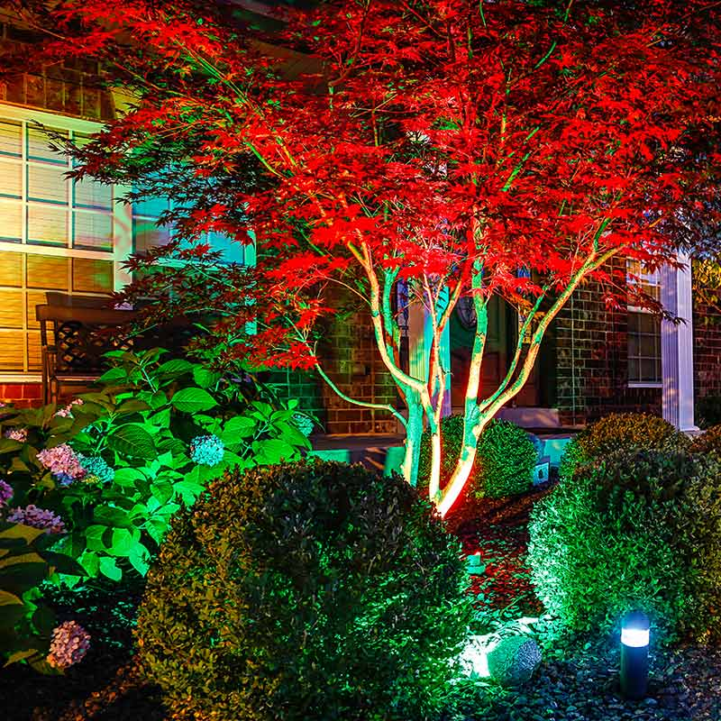 Picture of: Outdoor Led Lighting Color