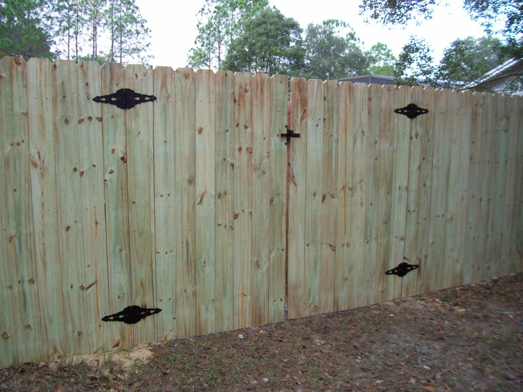 Picture of: Painting A Pressure Treated Wood Fence