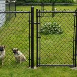 Panels Dog Fences Outdoor