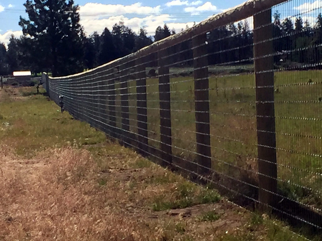 Image of: Pasture Metal Deer Fencing