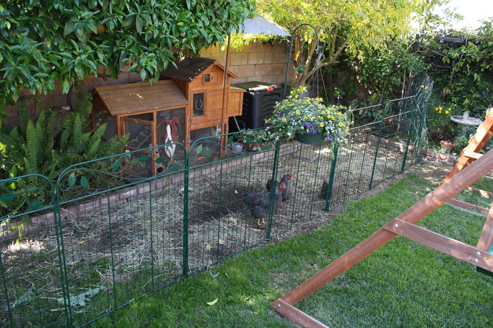 Picture of: Perfect Chicken Fence Ideas