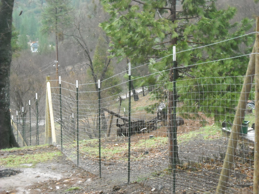 Image of: Placeville Metal Deer Fencing