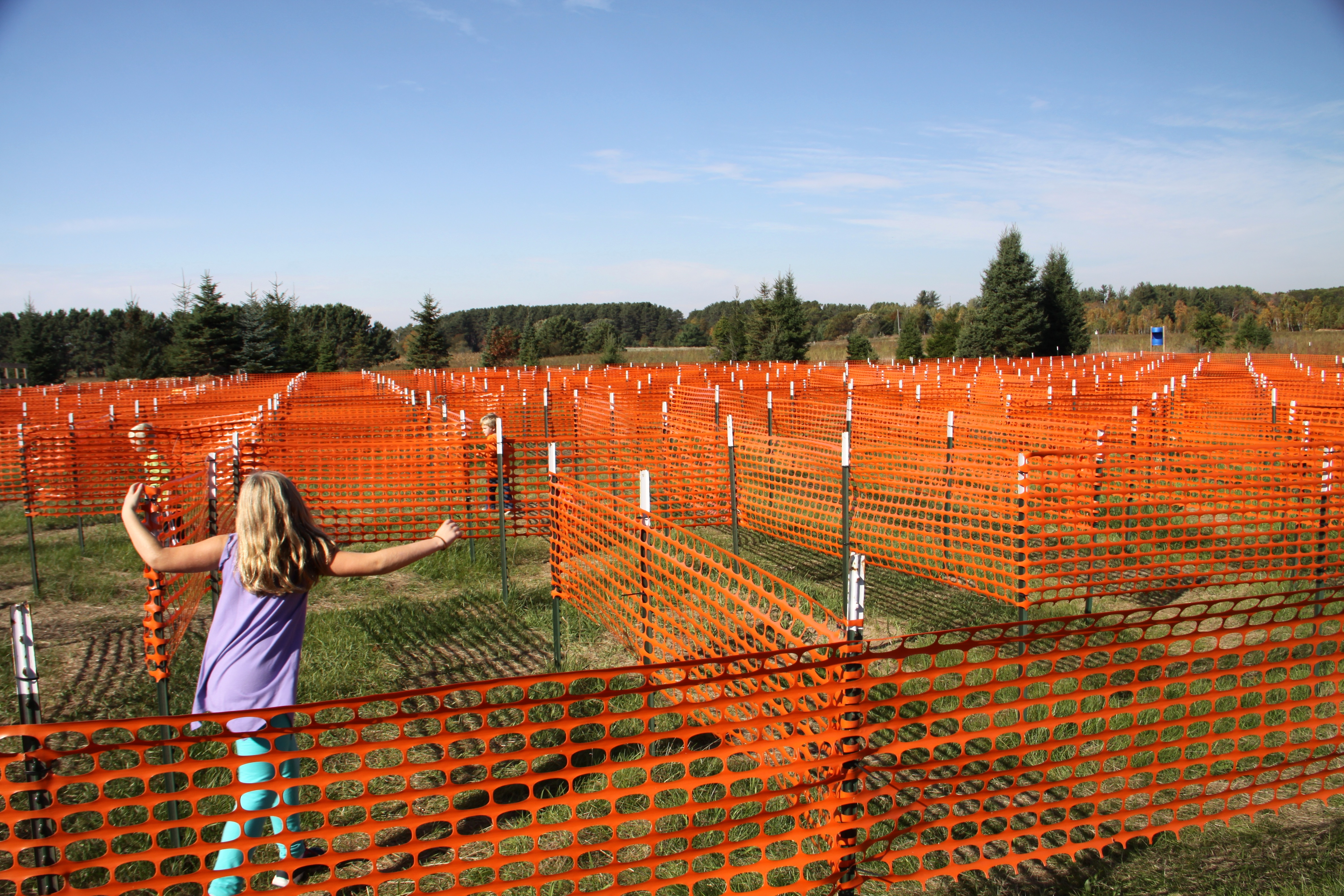 Picture of: Plastic Snow Fence Green
