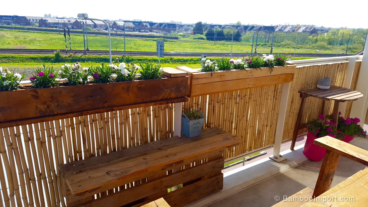 Picture of: Privacy Fence Ideas Bamboo