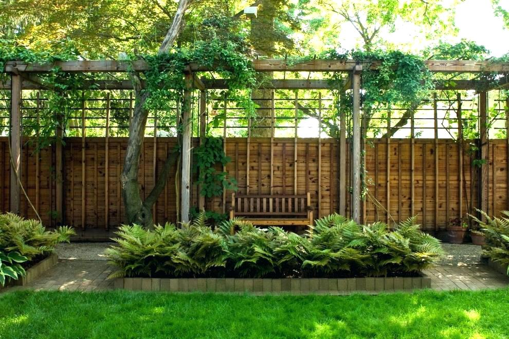 Picture of: Privacy Fence Ideas For Backyard Idea
