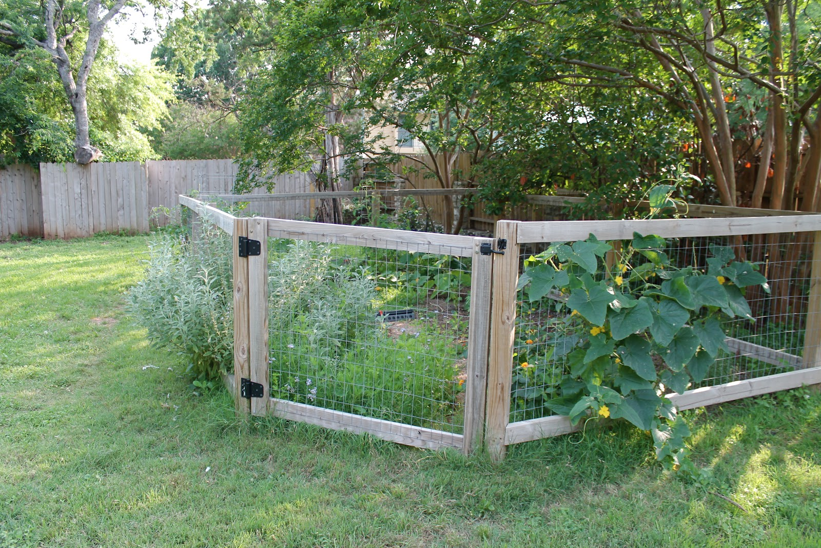 Picture of: Rustic Garden Fence Ideas