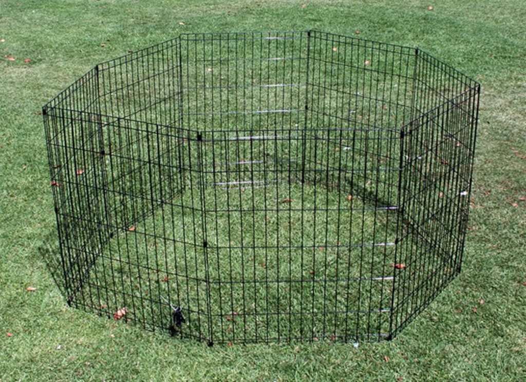 Picture of: Simple Portable Dog Fence