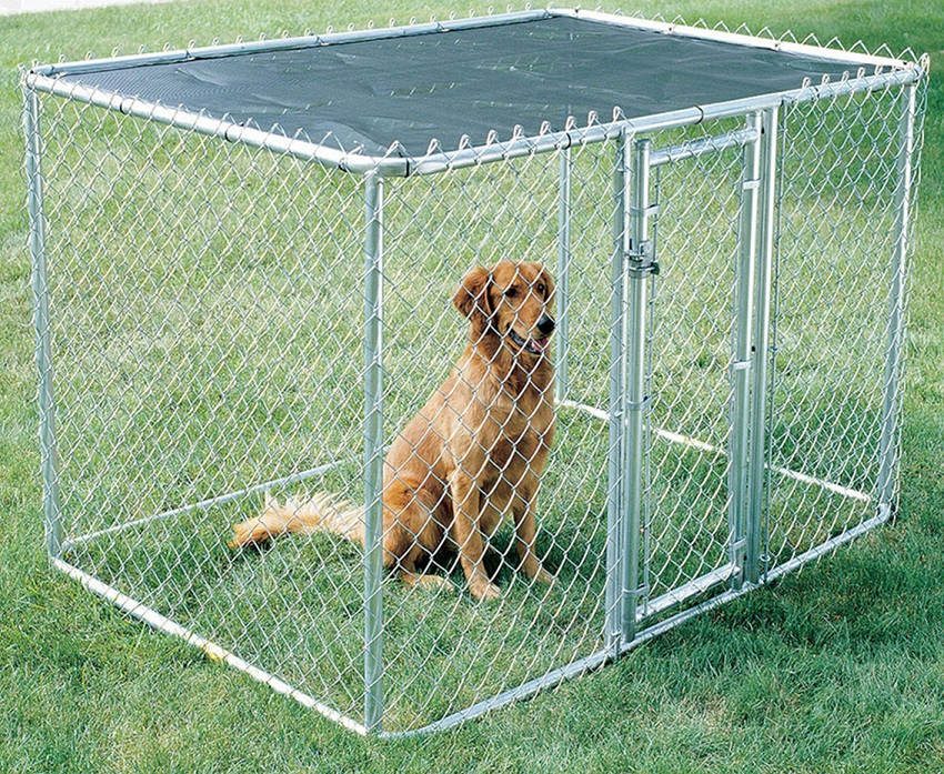 Picture of: Small Build Your Own Dog Fence