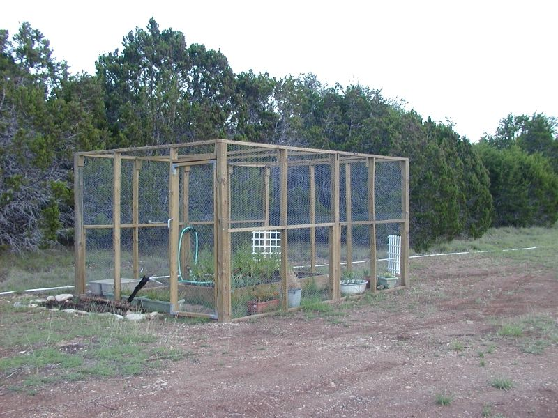 Picture of: Small Chicken Fence Ideas