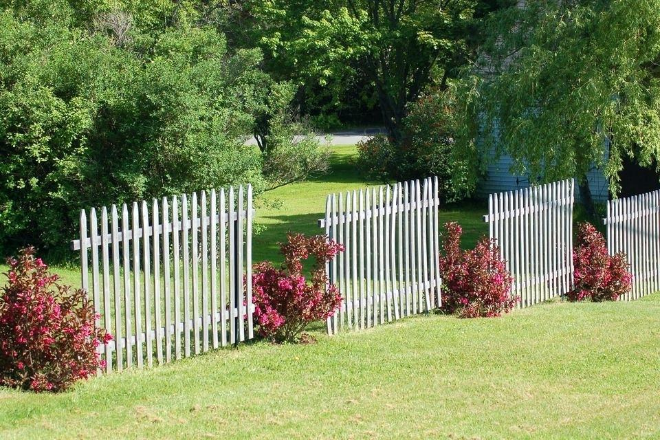Picture of: Small Dog Fence Indoor