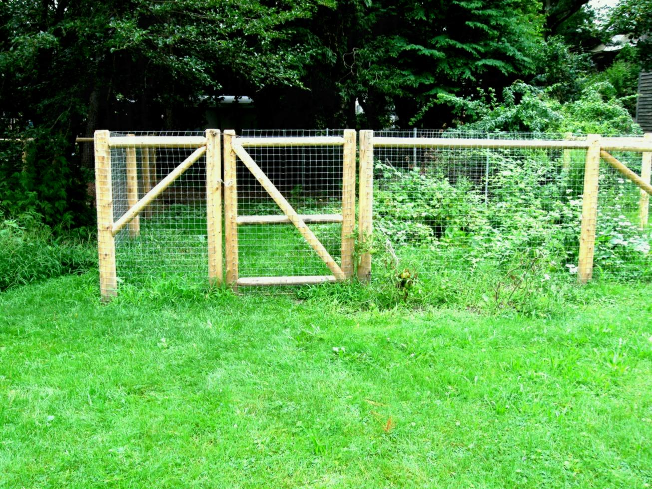 Picture of: Small Dog Fence Solutions
