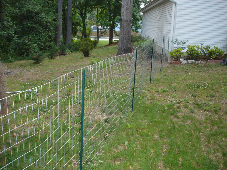 Picture of: Temporary Build Your Own Dog Fence