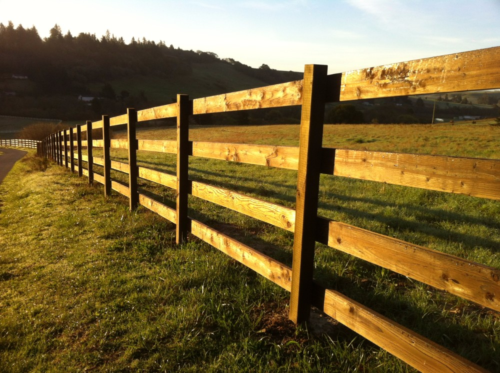 Picture of: Treated Wood Fence Panels