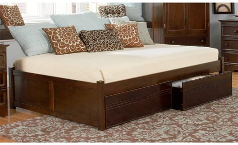 Image of: Twin Trundle Bed with Storage for Younger
