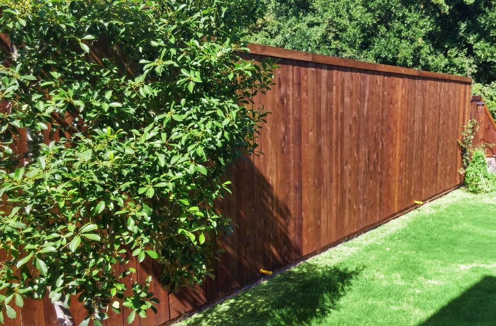 Picture of: Types of Wood Fences Decor