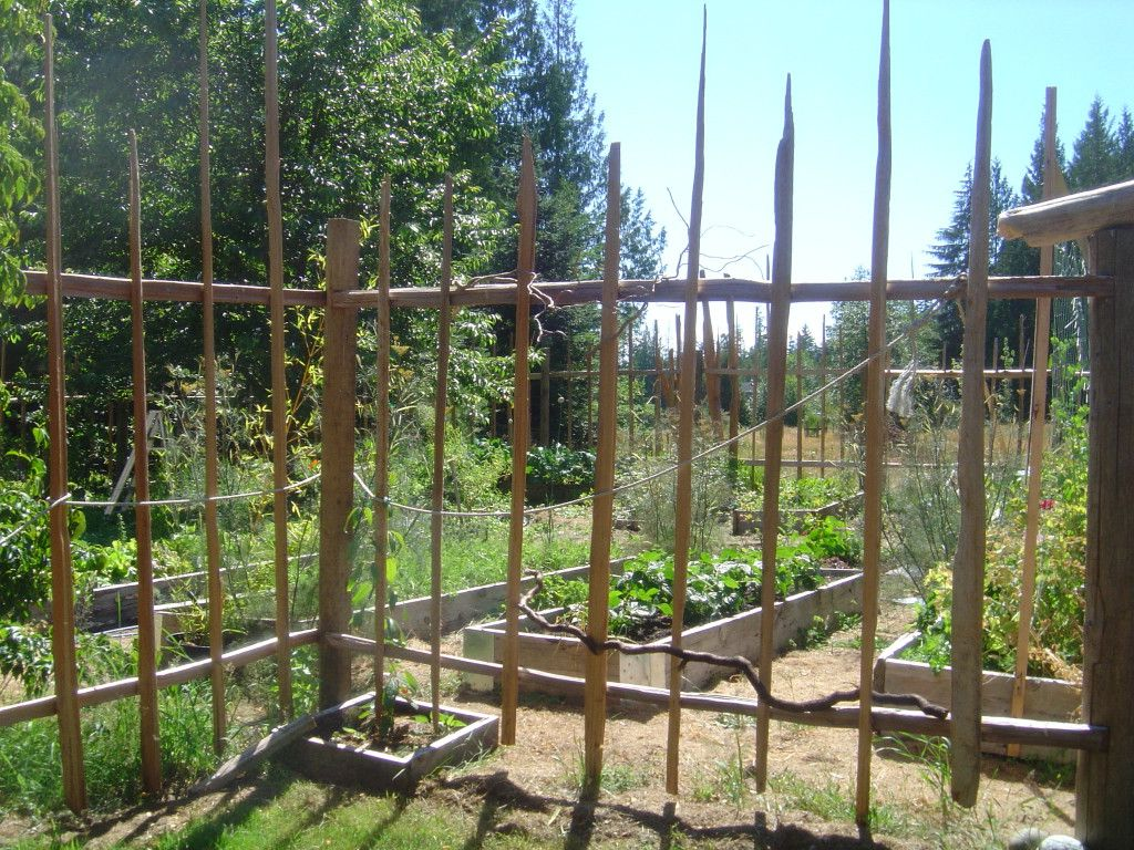 Image of: Vegetable Metal Deer Fencing