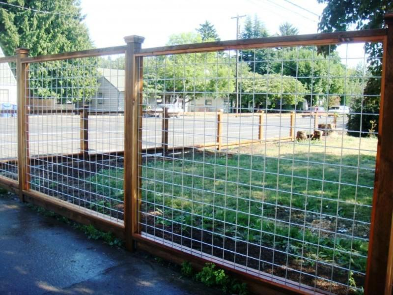 Picture of: Wire Mesh Fence Panels Garden