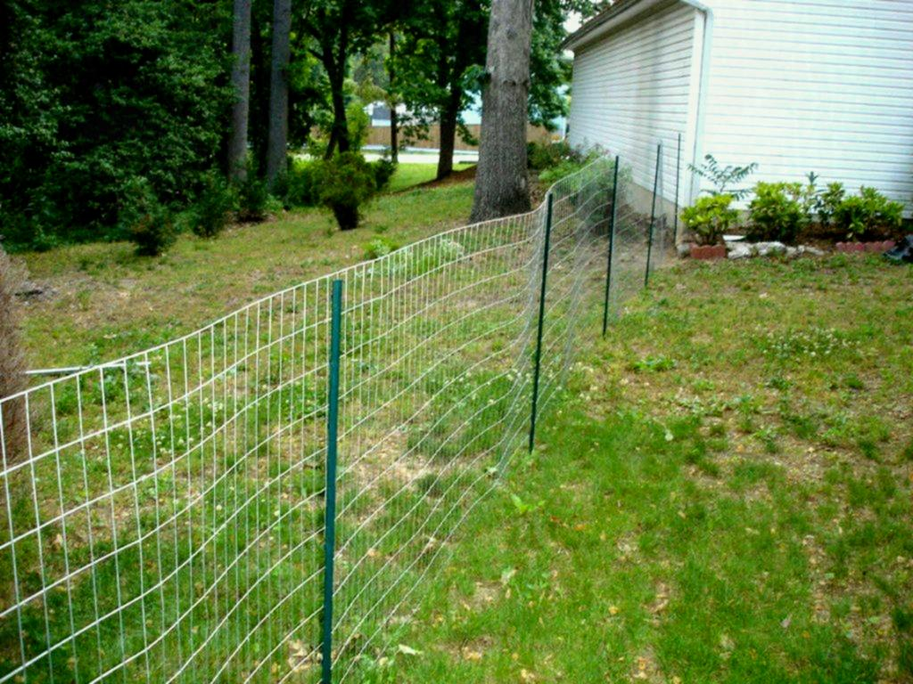 Wire Outdoor Dog Fence Panels