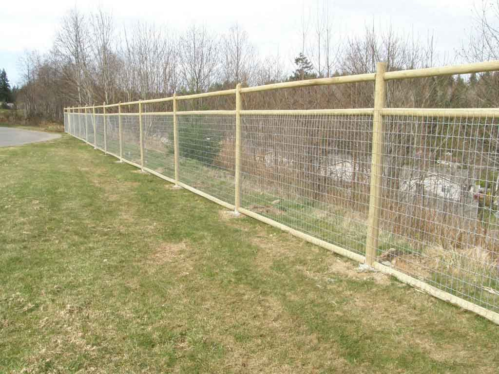 Image of: Wood Metal Deer Fencing