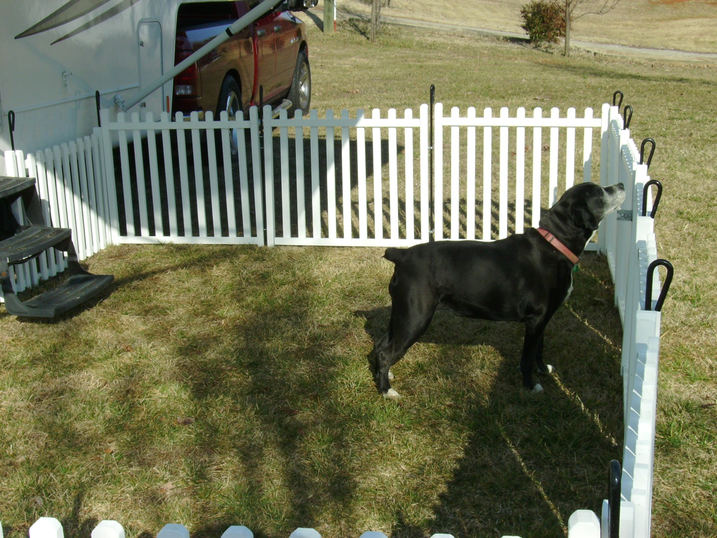 Picture of: Wood Outdoor Dog Fence Panels