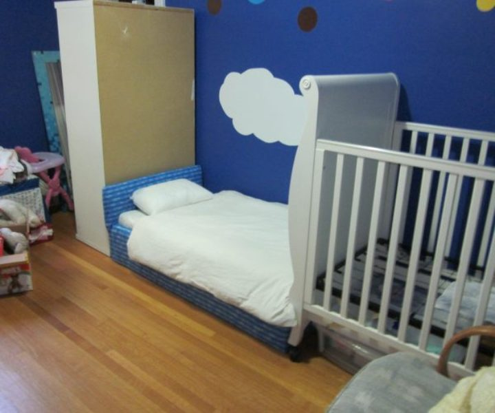 Image of: Unique Girl Toddler Beds