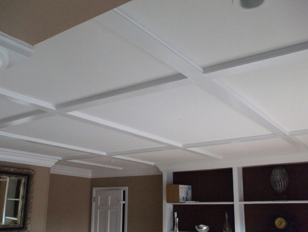 Basement Drop Ceiling Ideas Color