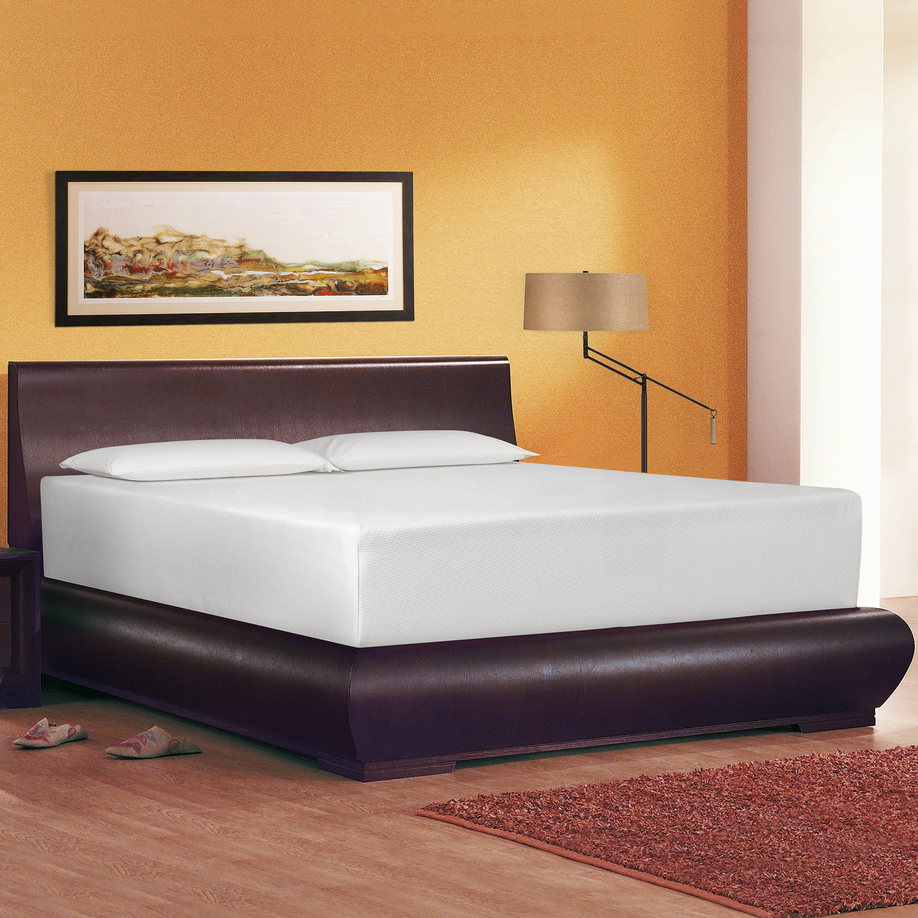 Image of: Memory Foam Futon Mattress Ideas