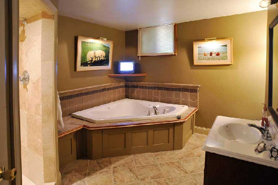 Image of: Accessible Basement Bathroom Designs