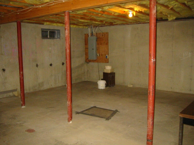 Image of: Remodel Basement Walls Systems