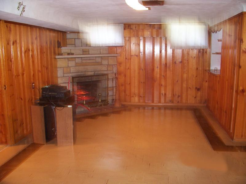 Top Basement Wall Paneling